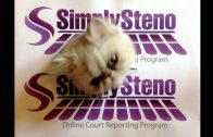 Court Reporting – SimplySteno CAT